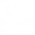 OrgForce Consulting